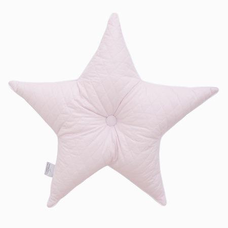 gwiazda_pudrowy r+-+-1